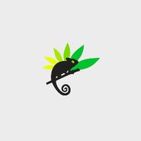 Site participatif Cetanou (La Réunion)